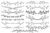 Black Hand Drawn Doodle Dividers, Line Borders with Branches, Herbs, Plants and Flowers. Decorative Outlined Vector Illustration. Floral Dividers Collections