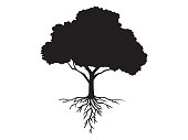 Hand drawn black icon of an isolated tree with roots. Element for decoration, emblems, logo