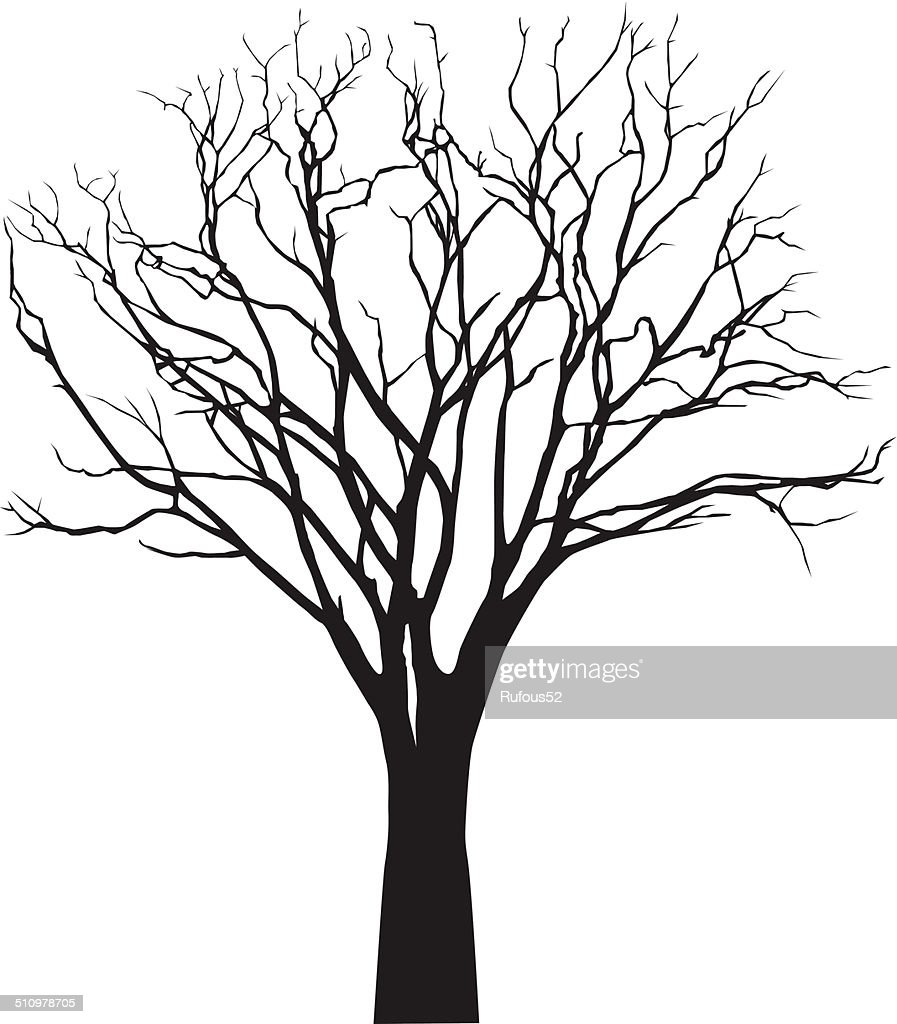 vector black silhouette of a bare tree vector art thinkstock rh thinkstockphotos com tree vector art black tree vector artwork
