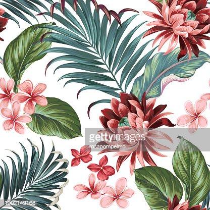 Vector botanic exotic design with large lotus, palms, frangipani, elephat ears. : stock vector