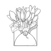 Vector bouquet with outline Cyclamen or Alpine violet bunch, bud and leaf in envelope in black isolated on white background. Perennial Alpine mountain Cyclamen in contour for spring coloring book.