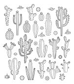 Vector cactus, flowers and grass monoline icons. Different types of cactus plants.
