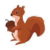 Vector cartoon style illustration of squirrel with acorn. Icon for web. Isolated on white background.