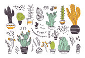 Vector collection of hand drawn different cactus shapes and abstract doodle elements isolated on white background. Trendy sketch style. Perfect for pattern, decor, card, packaging, banner, ads, print.