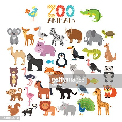Vector collection of Zoo animals. Set of cute cartoon animals : Vector Art