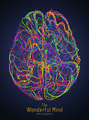 Vector colorful illustration of human brain with synapses. Conceptual image of idea birth, creative imagination or artificial intelligence. Net of lines forms brain structure. Futuristic mind scan