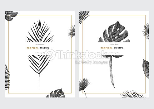 vector contemporary greeting card set with tropical graphics in