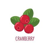 Vector carnberry icon. Flat cartoon illustration
