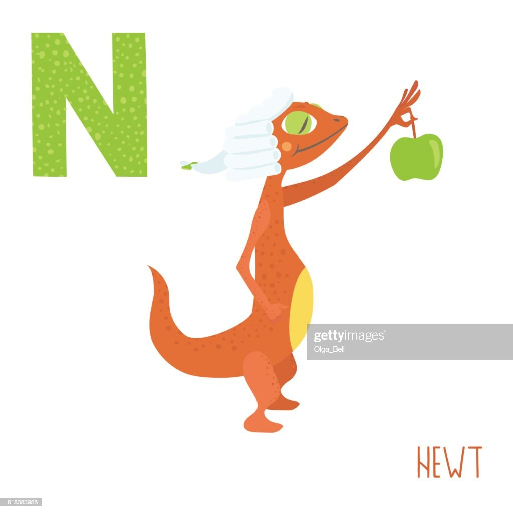 Image of: Letter Vector Cute Kids Animal Alphabet Letter For The Newt Thinkstock Vector Cute Kids Animal Alphabet Letter For The Newt Vector Art