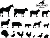 Farm animals silhouettes collection. Lots of farm animal isolated on white for your work.