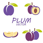 Vector flat plum icons set on white background
