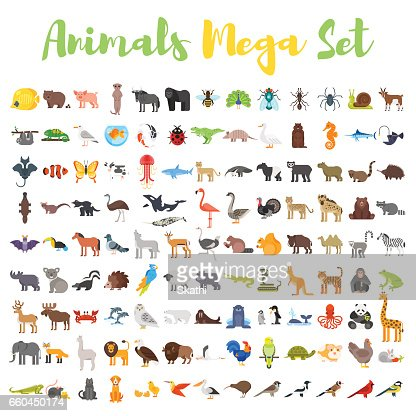 Vector flat style big set of animals. : Arte vetorial