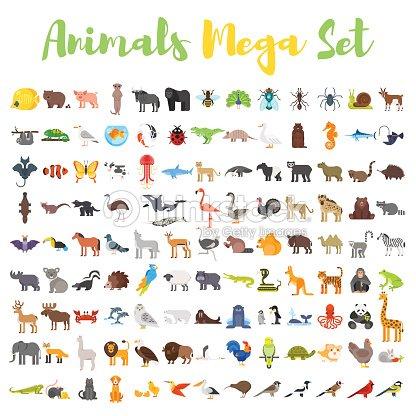 Vector flat style big set of animals. : stock vector
