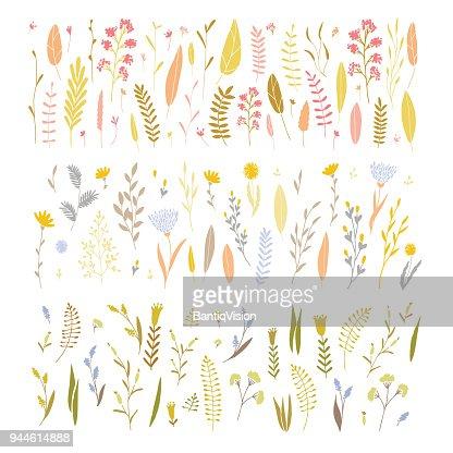 Vector floral set. : stock vector