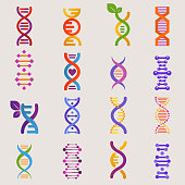 DNA vector genetic sign with genome or gene in biology medical research and DNAse or DNAbinding structure illustration set isolated on white background.