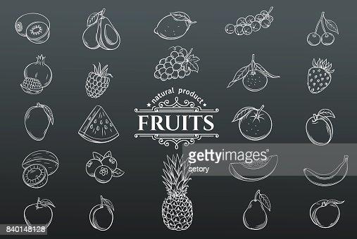 Vektor-handgezeichnete Früchte Icons set. : Vektorgrafik