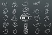 Vector hand drawn fruits icons set. White on black. Decorative retro style collection farm product restaurant menu, market label.