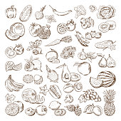 Vector hand drawn pictures of fruits and vegetables. Doodle vegan food illustrations. Vegetable and fruit drawing doodle collection