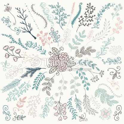 Vector Hand Sketched Rustic Floral Doodle Branches Art