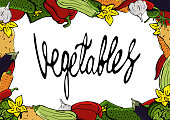 Delicious useful vegetables on a white background.