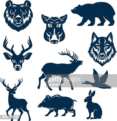 Vector icons of wild animals and birds for hunting : stock vector