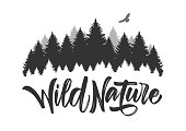 Vector illustration: Hand drawn type lettering of Wild Nature with silhouette of Pine Forest and Hawk. Brush calligraphy. Typography design.