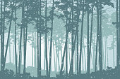 Vector illustration of a coniferous forest in winter with falling snow