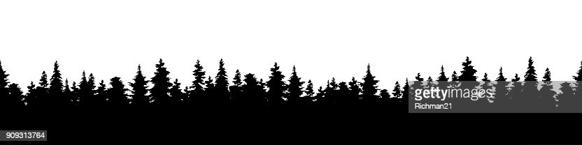 Vector illustration of a silhouette panorama of a coniferous forest. Forest background : Arte vetorial