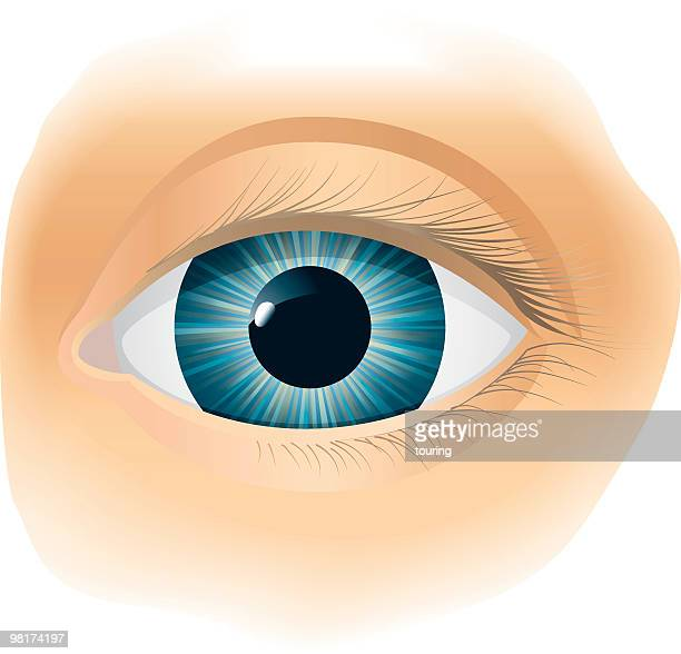Vector illustration of a single blue eye over beige skin