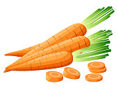 Vector illustration of carrot with tops. Sliced carrots. Pieces of carrots. Carrots with leaves and carrot slices. Web site page and mobile app design Detailed vegetarian food sketch