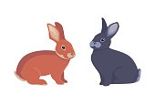 vector illustration of cartoon rabbits