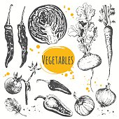 Set of hand drawn zucchini, cherry tomatoes, onions, carrots, cabbage, peppers, turnips. Fresh organic food. Black and white sketch of food.