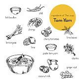 set of vector illustrations of Ingredients for thai tom-yam soup. hand drawn illustration. graphics vintage style. products for cooking