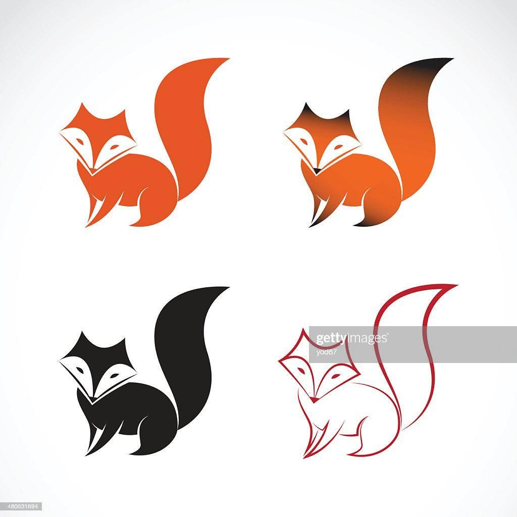Vector image of an fox design on white background : Vector Art