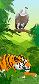 Vector Jungle rainforest vertical baner with Griffon vulture and tiger