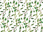 Vector leaves and interwinted green branches, foliage seamless pattern background. Lovely plant, floral design. Great for wedding or invitations. Vector watercolor painting illustration isolated white