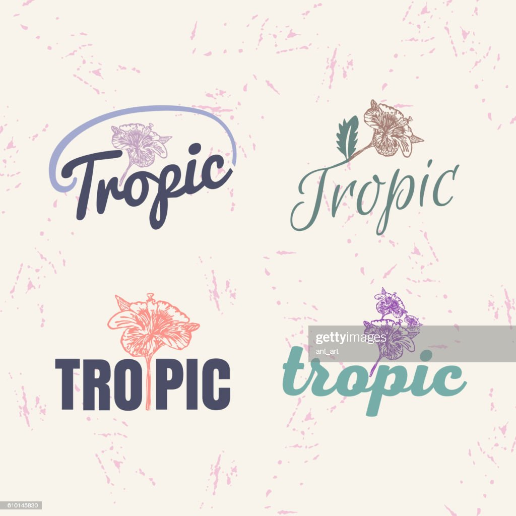 Vector Logo Set With Hibiscus Flower Vector Art Getty Images