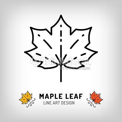Vector Maple Leaf Icon Autumn Leaves Canada Symbol Line Design