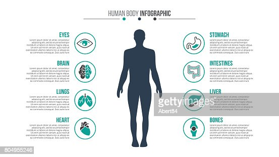 Vector medical and healthcare infographic. : stock vector