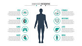 Vector human body infographic. Medical and healthcare template for presentation with 8 steps, options, parts or processes.