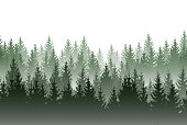 Vector misty green forest isolated on white background
