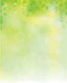 Vector green leaves on sunshine background, blurred effect.