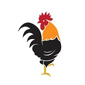Vector of a cock design on white background, Farm Animals