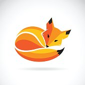 Vector of a fox design on a white background, Wild Animals