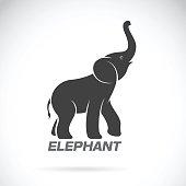 Vector of an elephant design on a white background. Elephant Logo.