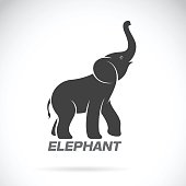 Vector of an elephant design on a white background. Elephant Logo.
