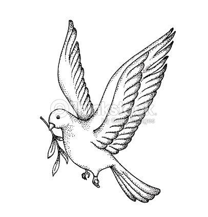 Vector Of Hand Draw Dove Symbol Of Peace Vector Art