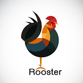 Vector of rooster design on white background. Cock. Animals. Vector illustration.