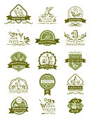 Olive oil icons of green and black olives for extra virgin product bottle packing label templates vector isolated set. Italian cuisine best quality vector organic cooking oil drops and olive leaf