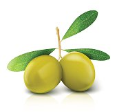 Two vector olives isolated on white